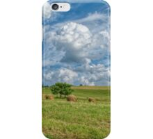 Countryside Beauty iPhone Case/Skin
