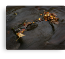 river in autumn I Canvas Print