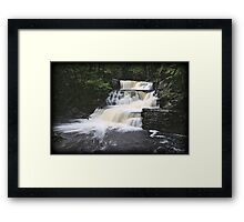 Picturesque Pike Framed Print