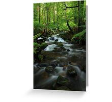 The  Warburton Rainforest Gallery. Greeting Card
