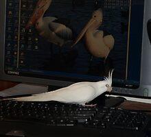 My Secretary Hard At It. by shortshooter-Al