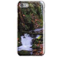 Dollar Glen iPhone Case/Skin