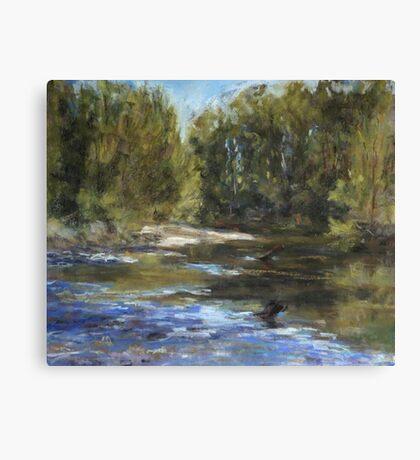 Wilson River 1 - paint out Canvas Print