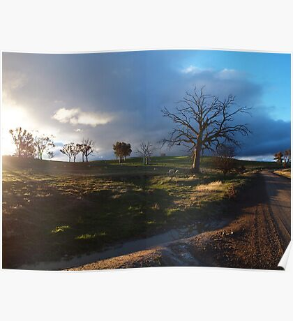 Rural Sunset. Poster