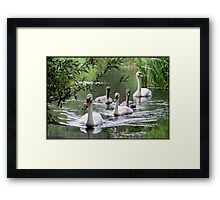 Three months later... Framed Print