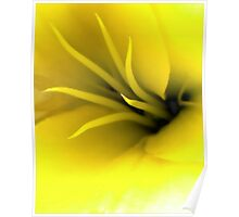 This Lily Likes Yellow Poster