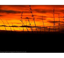 Winter Soltace Sunset  Photographic Print