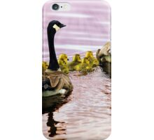 Going Home for the Night (Canada Geese) iPhone Case/Skin