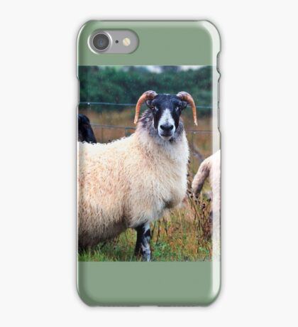 Don't Look at Me Like I was a Wet Sweater (On the road to Mallaig, Scotland) iPhone Case/Skin