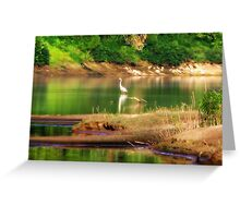 Serenity In Orton Greeting Card