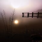 Reflection and Fog by T.J. Martin