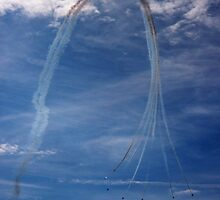 Red Arrows! by Susie Hawkins