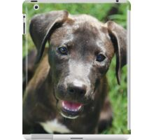 Rescue Pup iPad Case/Skin