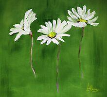 Daisy, Daisy, Daisy by Angela  Burman