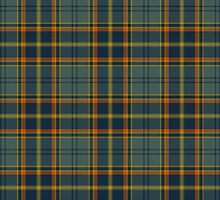 County Wicklow Irish Tartan by thecelticflame