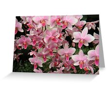Pink! Greeting Card