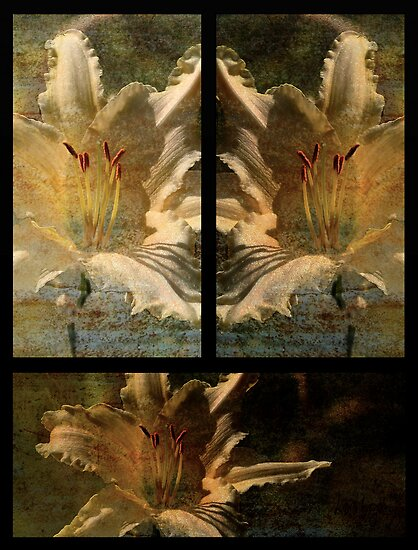 Garden Lily by Lois  Bryan