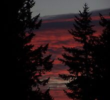 Sunset  by Jonice