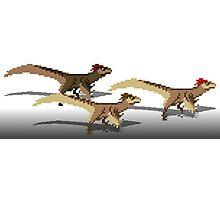 Utahraptor Photographic Print