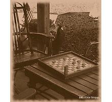 Checkers Anyone? Photographic Print