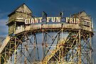 The Fair by Adrian Evans