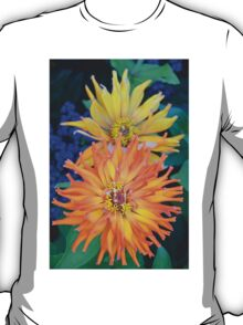 Orange and yellow colored dahlias T-Shirt