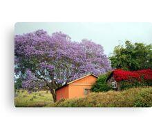 Colors of Upcountry Maui, Hawaii Canvas Print