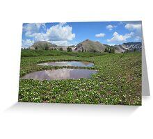 twin ponds Greeting Card