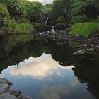 Ohelo Gulch Maui , Hawaii by ZIGSPHOTOGRAPHY