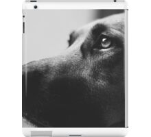 Puppy Eyes iPad Case/Skin