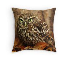 Little Owl (Athene noctua) Throw Pillow