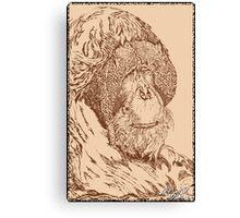 Leonardo Da Orangutan Canvas Print