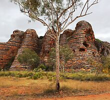 Purnululu Domes by Peter Hodgson
