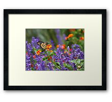 Orange Juice Framed Print
