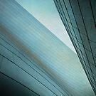 Ventral Pleats by Kevin Bergen