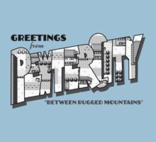 Greetings from Pewter City Baby Tee