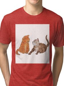 Watercolour Kittens Tri-blend T-Shirt