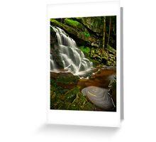 Elakala Falls 2: Swirl Greeting Card