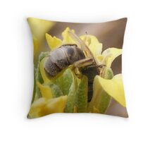 Bee at the Nectar Bar Throw Pillow