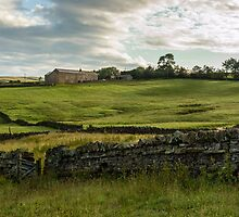 Rural Farmstead by Mike Cave