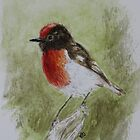 Red Capped Robin by JulieWickham