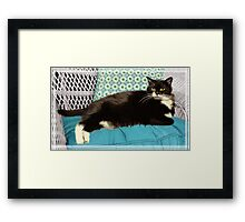 """Dad's Cat"" - Landscape Framed Print"
