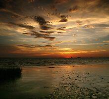 Warm Summer Evening by Jonicool