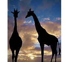 The winner by a neck Photographic Print