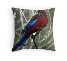 Crimson Rosella Throw Pillow