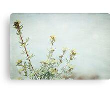 Wildflowers - Lake Louise, Canada Metal Print