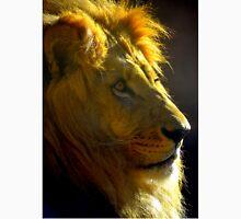 Lion by Sunset Unisex T-Shirt