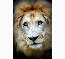 Lion stare Unisex T-Shirt