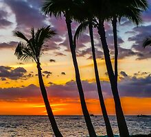 Kona Dreams by Pamela Newcomb