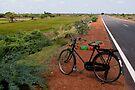 Bicycle, Tamil Nadu by Syd Winer